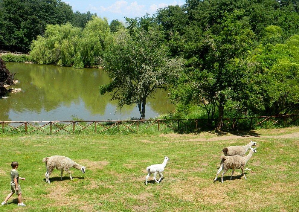 Parco di Cavriglia